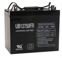 Universal Battery D5882 75 Amp-hours 12 Volt Z1 AGM Battery